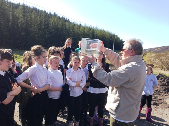 Willie Yeomans (CRF) shows pupils brown trout